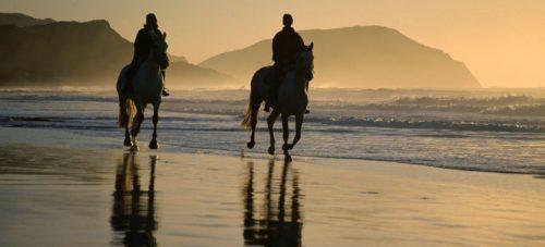 Поездки на лошадях