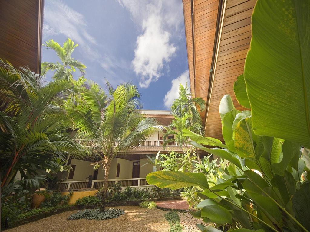 Пальмы на внутреннем дворике