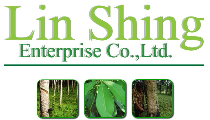 Lin Shing Enterprise